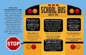 school zone safety school bus